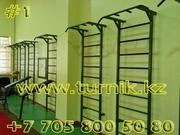 Спортивные тренажеры для дома и офиса,  турник у Вас дома в Алматы