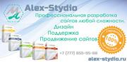 Профессиональная разработка сайтов Alex-Stydio